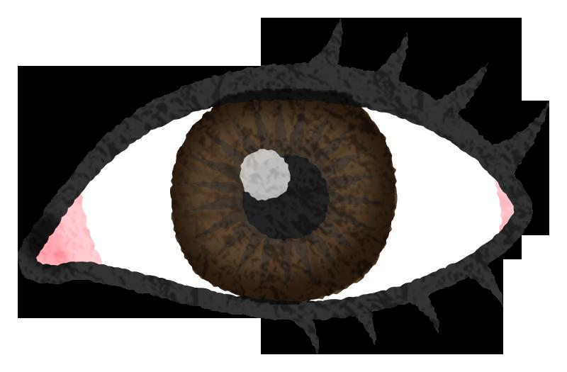 目のかわいいフリーイラスト素材