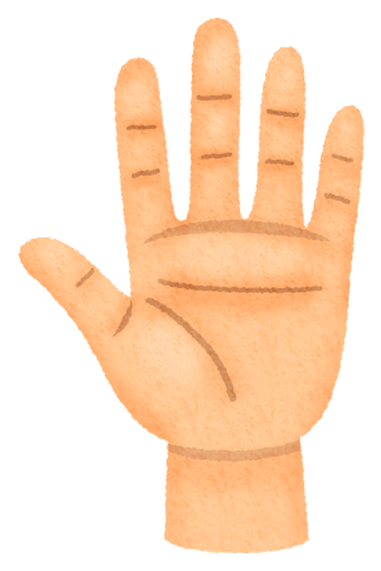 Palm of the hand