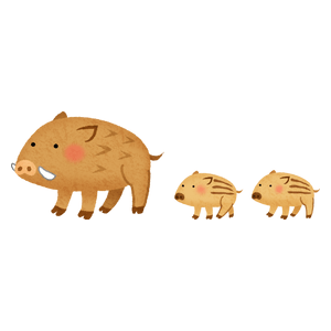 Mom and baby boars