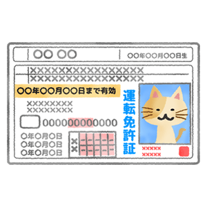 Driver's license (cat)