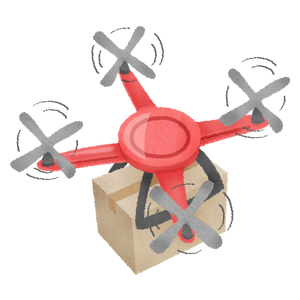 Drone carrying delivery box