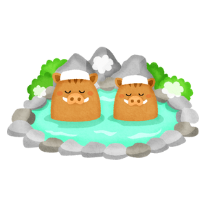 Boar couple in hot spring (New Year's illustration)