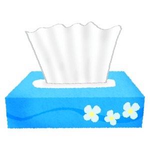 Kleenex box / Tissue box
