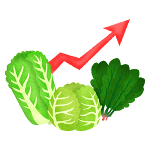 Price rise in leafy vegetables