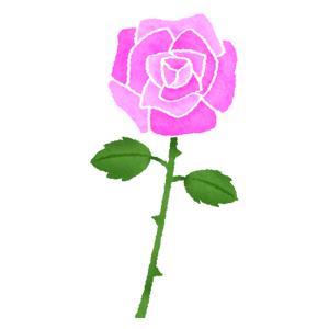 紫の薔薇バラの無料イラスト フリーイラスト素材集 ジャパクリップ