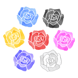 Roses in various colors