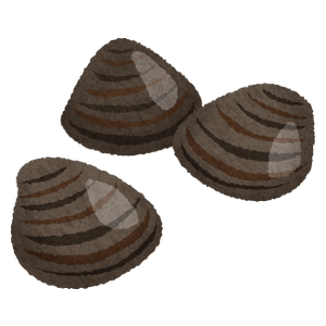 Shijimi clams
