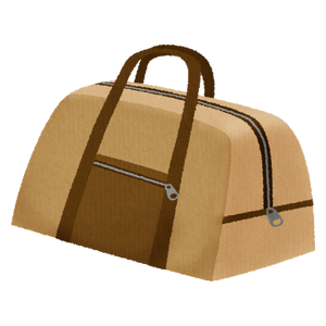 Brown traveling bag