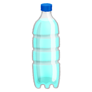 Water in plastic bottle (500ml)